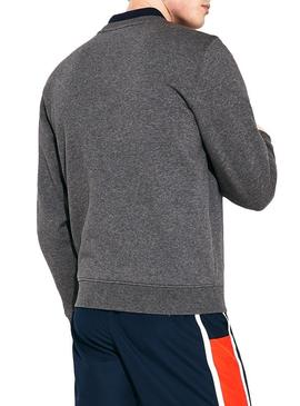 Sweat Lacoste Basica Gris Homme